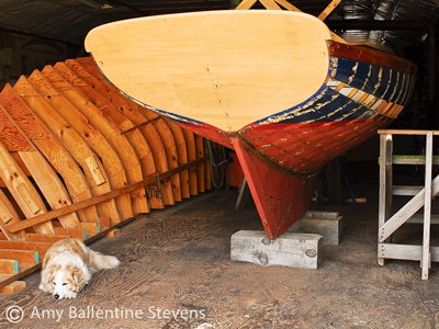 The restoration of a Herreshoff 12 overseen by Sula